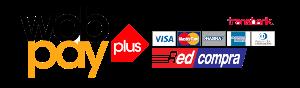 logo-webpay-plus-3-copy